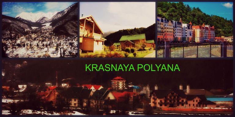 K POLYANA COLLAGE